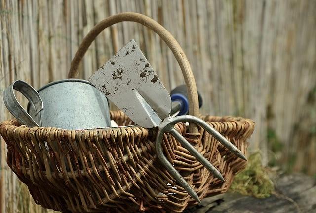 outils de jardinage dans un panier d'osier